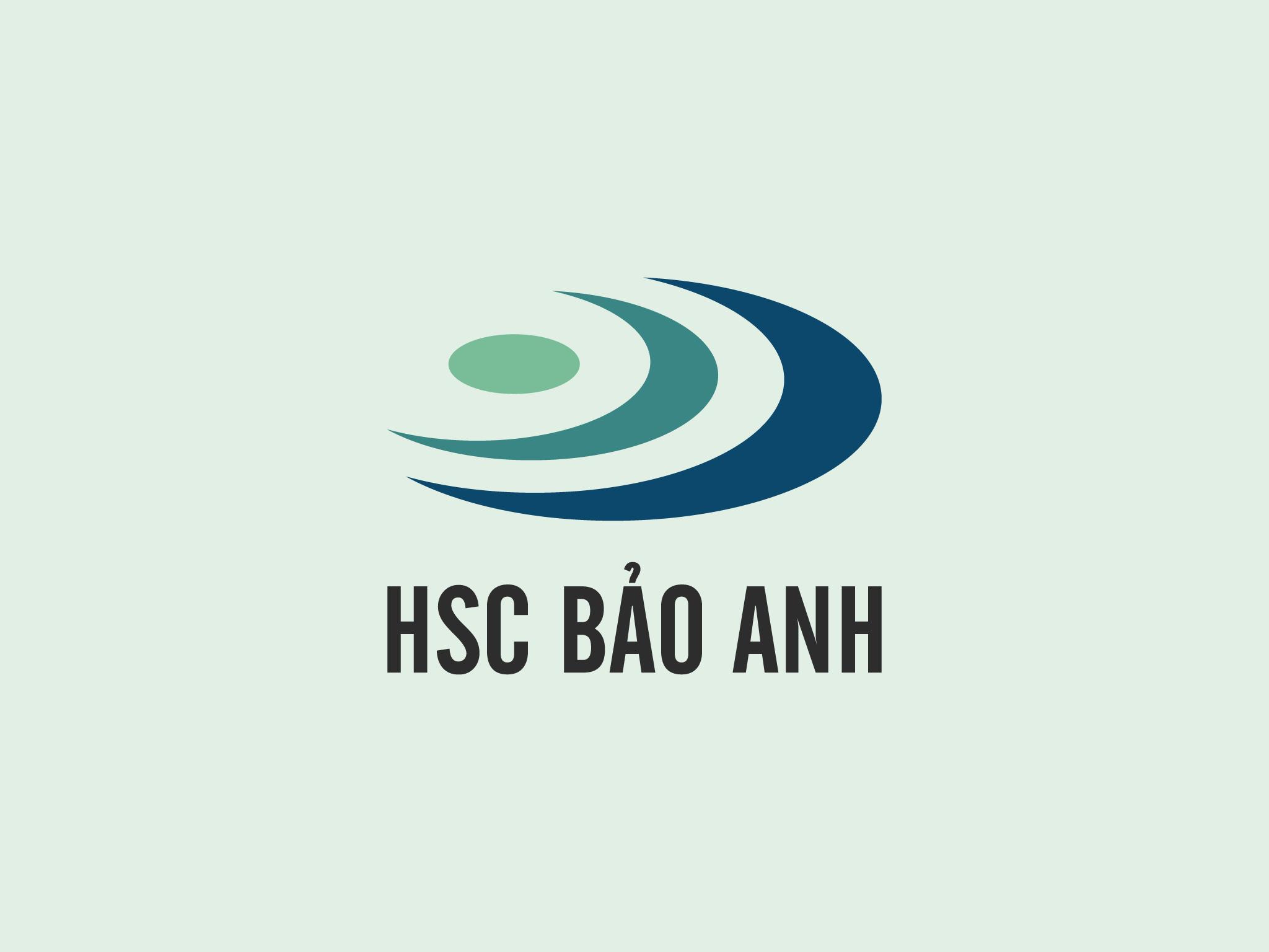 Logo HSC Bảo Anh